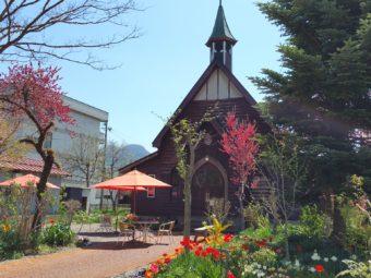 信徒さんやボランティアの皆さんが丹精込めた教会の庭の春